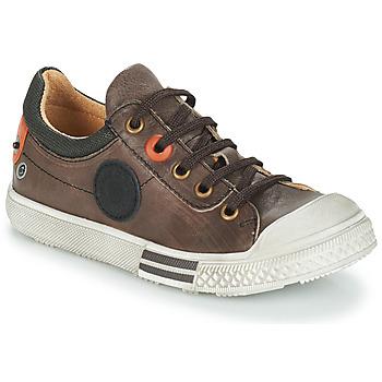 Schoenen Jongens Laarzen GBB UGO Brown