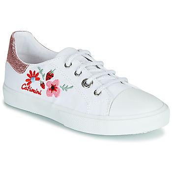 Schoenen Meisjes Lage sneakers Catimini SAXIFAGE Wit