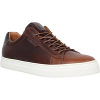 Schoenen Heren Lage sneakers Schmoove 98555 Brown