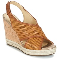 Schoenen Dames Sandalen / Open schoenen Geox JANIRA C Brown