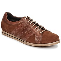Schoenen Heren Lage sneakers So Size GOPINETTE Brown