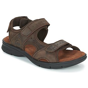 Schoenen Heren Sandalen / Open schoenen Panama Jack SALTON Brown