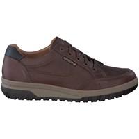 Schoenen Heren Lage sneakers Mephisto PACO Brown