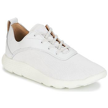 Schoenen Heren Lage sneakers Timberland FLYROAM Wit