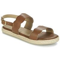 Schoenen Dames Sandalen / Open schoenen Betty London IKARO Brown