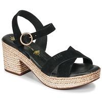 Schoenen Dames Sandalen / Open schoenen Musse & Cloud LARISE Zwart