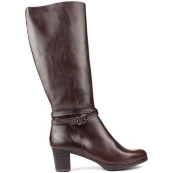 Schoenen Dames Laarzen Kroc S  ALTAS DE MARRON