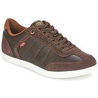 Schoenen Heren Lage sneakers Levi's LOCH Brown