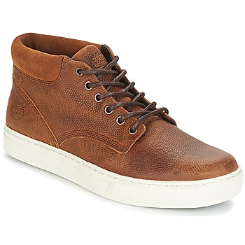 Schoenen Heren Laarzen Timberland ADVENTURE 2 0 CUPSOL TAN Brown