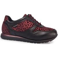 Schoenen Dames Lage sneakers Calzamedi DEPORTIVAS  LEOPARD W BURDEOS