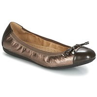 Schoenen Dames Ballerina's Geox D LOLA 2FIT Brown