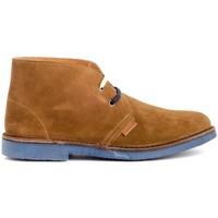 Schoenen Heren Laarzen Colour Feet MOGAMBO Brown