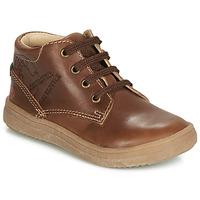 Schoenen Jongens Hoge sneakers GBB NINO Vte / Brown / Dpf / 2835