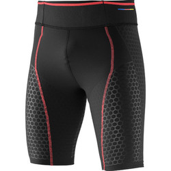 Textiel Heren Broeken / Pantalons Salomon S-Lab Exo Short Tight Zwart