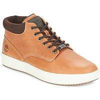 Schoenen Heren Hoge sneakers Timberland CityRoam Cupsole Chukka Graan