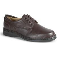 Schoenen Heren Derby Calzamedi CABALLERO M MARRON