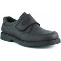 Schoenen Jongens Lage sneakers Pablosky TORO COLEGIAL MARRON