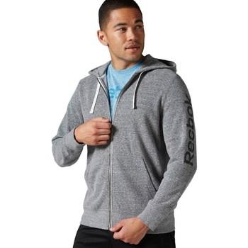 Textiel Heren Sweaters / Sweatshirts Reebok Sport Big Logo French Terry Gris