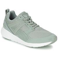 Schoenen Heren Lage sneakers Puma ARIAL EVOLUTION Grijs