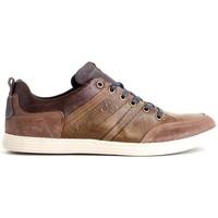 Schoenen Heren Lage sneakers Bullboxer 499-K2-4985A Brown