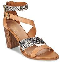 Schoenen Dames Sandalen / Open schoenen Carvela KISSY Brown