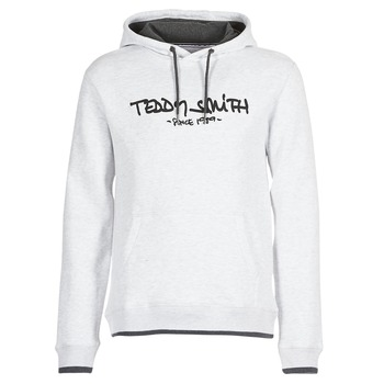 Textiel Heren Sweaters / Sweatshirts Teddy Smith SICLASS HOODY Grijs