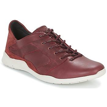 Schoenen Dames Lage sneakers TBS JARDINS Brown