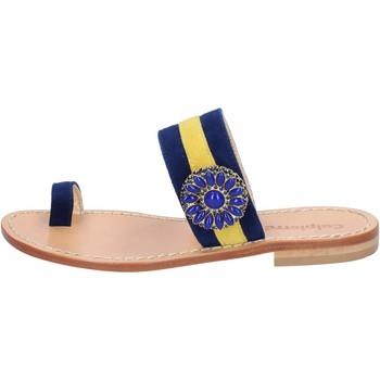 Schoenen Dames Sandalen / Open schoenen Calpierre BZ841 Bleu