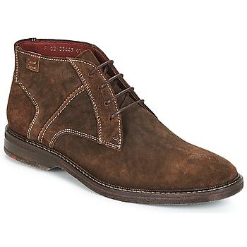Schoenen Heren Laarzen Lloyd DALBERT Brown