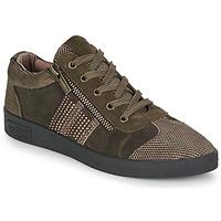 Schoenen Dames Lage sneakers Mam'Zelle BADRIA Brown