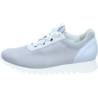 Schoenen Dames Lage sneakers Paul Green 4627 Blanc, Gris