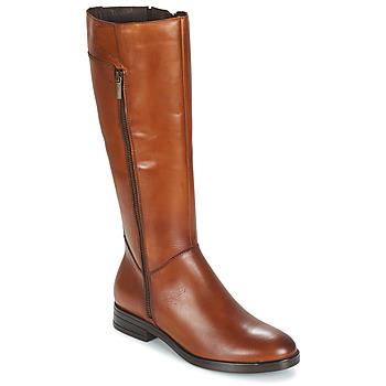 Schoenen Dames Hoge laarzen Betty London JANKA Brown