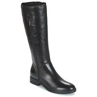 Schoenen Dames Hoge laarzen Betty London JANKA Zwart