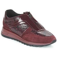 Schoenen Dames Lage sneakers Geox D TABELYA Bordeaux