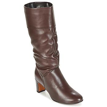 Schoenen Dames Hoge laarzen André SARA Brown