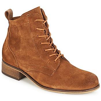 Schoenen Dames Laarzen André GODILLOT Brown