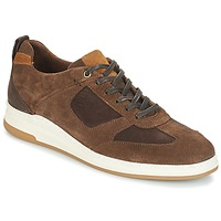 Schoenen Heren Lage sneakers André CINZA Brown