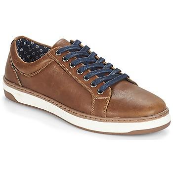 Schoenen Heren Lage sneakers André NIELD Brown