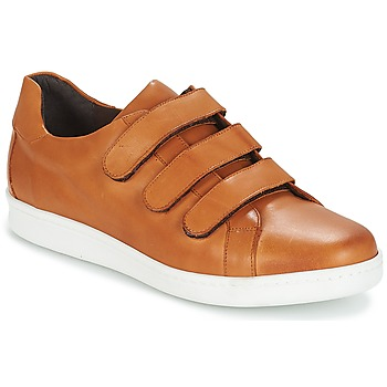 Schoenen Heren Lage sneakers André AVENUE Brown