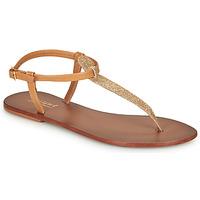 Schoenen Dames Slippers André GLITTER  camel