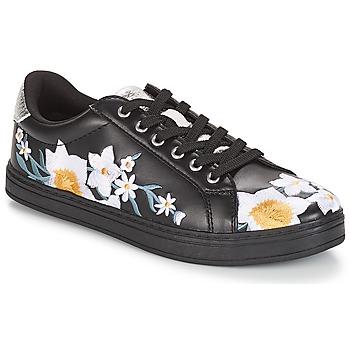 Schoenen Dames Lage sneakers André COROLLE Zwart