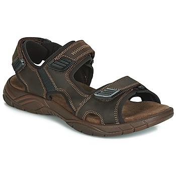 Schoenen Heren Sandalen / Open schoenen André MIAMI Brown
