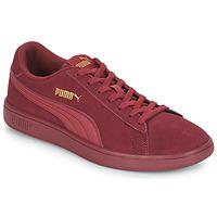 Schoenen Heren Lage sneakers Puma SMASH V2 SD Bordeaux