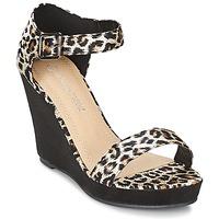 Schoenen Dames Sandalen / Open schoenen Moony Mood IVONGA Zwart / Leopard