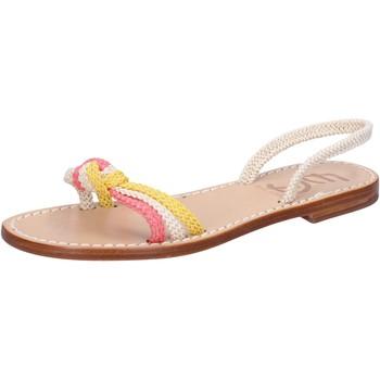 Schoenen Dames Sandalen / Open schoenen Eddy Daniele AV411 Blanc