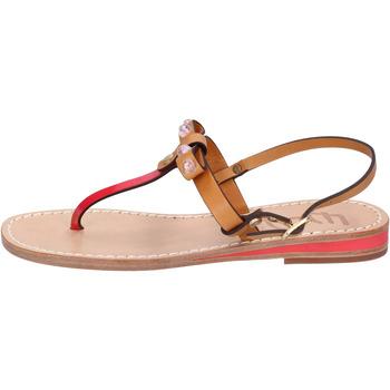 Schoenen Dames Sandalen / Open schoenen Eddy Daniele AX766 Marron