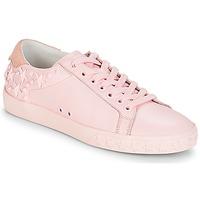 Schoenen Dames Lage sneakers Ash DAZED Roze