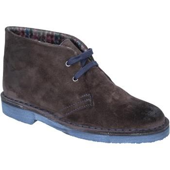 Schoenen Dames Low boots Kep's By Coraf KEP'S polacchini stivaletti t. moro camoscio BX659 Marrone