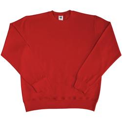 Textiel Heren Sweaters / Sweatshirts Sg SG20 Rood