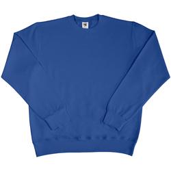 Textiel Heren Sweaters / Sweatshirts Sg SG20 Koninklijk